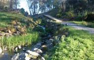 Naturen i Tyresö