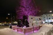 Vinteraktiviteter i Tyresö