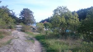 Tyresö slotts trädgård