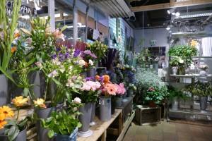 Blommor Tyresö
