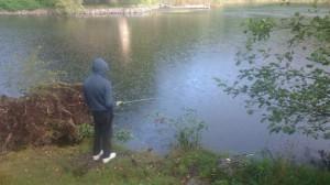 fiske (208)