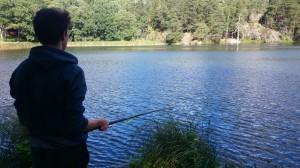 fiske (226)