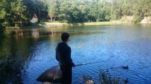 fiske (233)